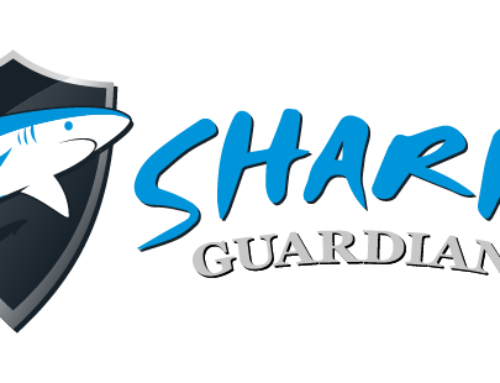 Shark Guardian drives 'UK Parliament Petition' to ban the fin trade in Great Britain!